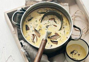 Tradiční polévky