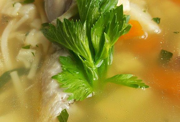 Kuřecí polévka photo-0