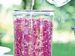 Želé z růží