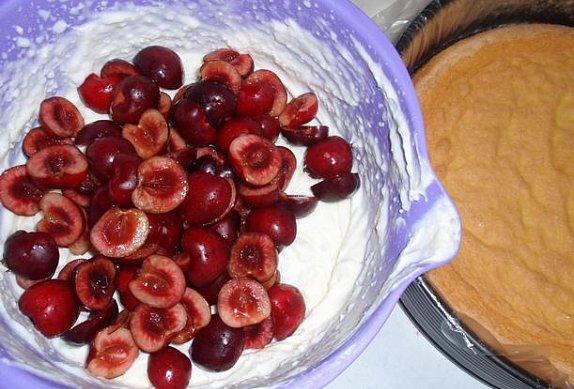 Třešňový dort / řez