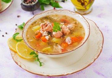 Rybí polévka podle Radka Davida