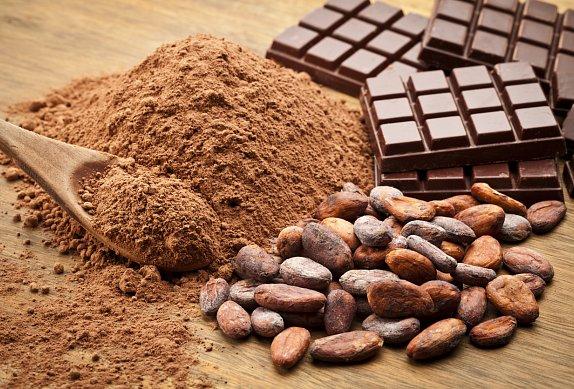 Čokoládová babka