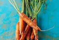 Jahelník mrkvový