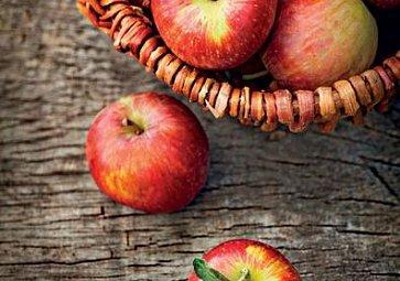 Jablka aneb pravidla moštárny